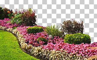 Flower Garden Landscaping Raised-bed Gardening PNG