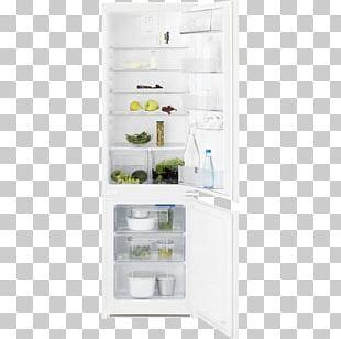 Refrigerator Freezers Electrolux Home Appliance BRB260010WW-Samsung PNG