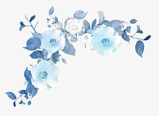 Blue Flower Border Texture PNG