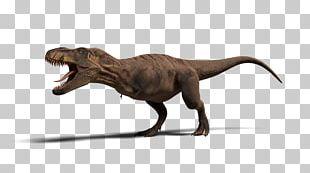 Tyrannosaurus Jurassic Park: Operation Genesis Ceratosaurus Velociraptor Dinosaur PNG