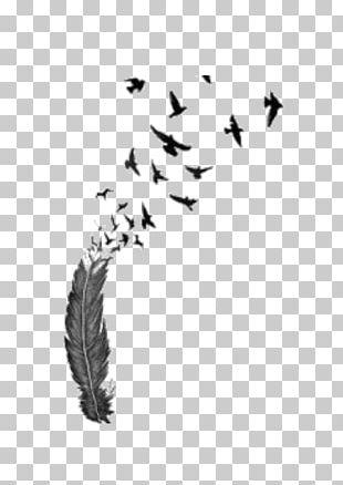 Bird Flight Feather Tattoo PNG