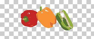 Habanero Jalapeño Serrano Pepper Tabasco Pepper Cayenne Pepper PNG