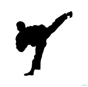 World Taekwondo Silhouette Martial Arts Krav Maga PNG