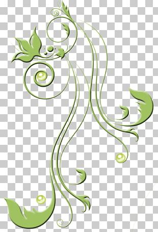 Floral Design Flower Rose Frames PNG