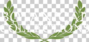 Bay Laurel Sihga GmbH Laurel Wreath Crown PNG