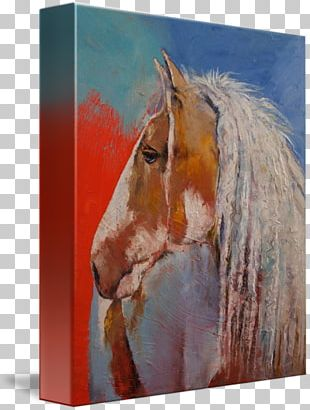 Gypsy Horse Watercolor Painting Stallion Canvas Print PNG