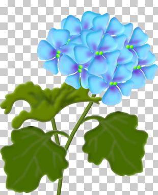 Flower Lantana Camara PNG
