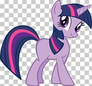 Twilight Sparkle Spike Pinkie Pie Rainbow Dash Rarity PNG
