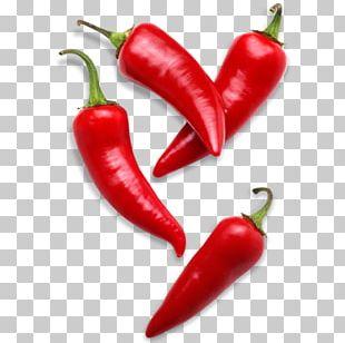 Bell Pepper Capsicum Annuum Var. Acuminatum Chili Pepper Black Pepper PNG
