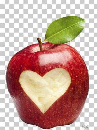 Health Nutrition Diet Food School PNG