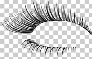 Eyelash Extensions Eye Shadow PNG