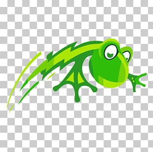 Tree Frog Logo PNG