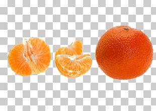 Clementine Mandarin Orange Blood Orange Tangerine Tangelo PNG