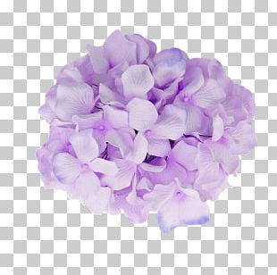 French Hydrangea Flower Purple Baby Shower PNG
