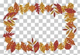 Maple Leaf Red Maple Autumn Leaf Color PNG