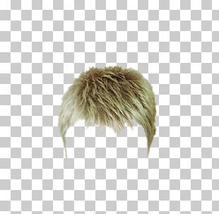 Wig Hairstyle PNG