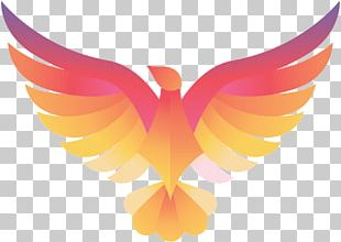 Phoenix Computer Icons Logo Business Architectural Engineering PNG