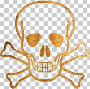 Skull And Bones Skull And Crossbones Human Skull Symbolism Drawing PNG