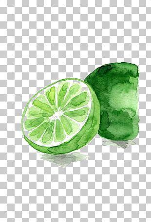 Lemon-lime Drink Watercolor Painting Fruit PNG