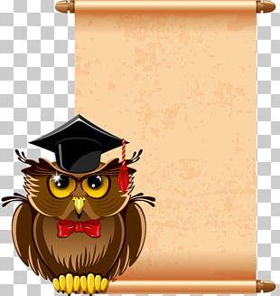 Teacher School Photography PNG
