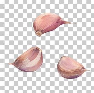 Garlic Bread Condiment PNG
