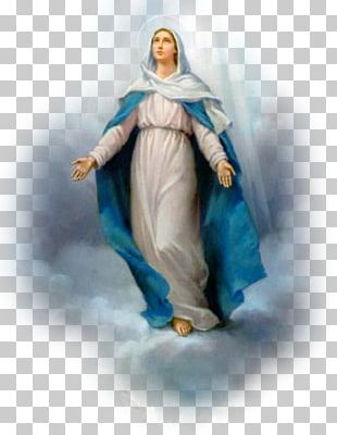 Our Lady Of Guadalupe Feast Of The Immaculate Conception Our Lady Of Lourdes PNG