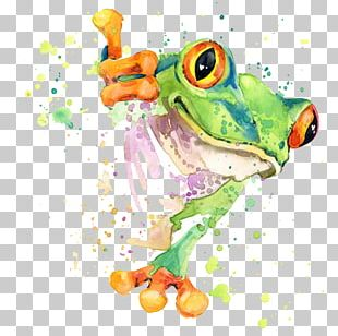 Watercolor Painting Drawing Frog PNG