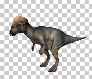 Jurassic Park: Operation Genesis Pachycephalosaurus Warpath: Jurassic Park Homalocephale Tyrannosaurus PNG