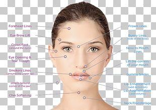 Facial Surgery Aesthetics Rhytidectomy Aesthetic Medicine PNG