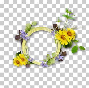 Floral Design Flower Tulip PNG