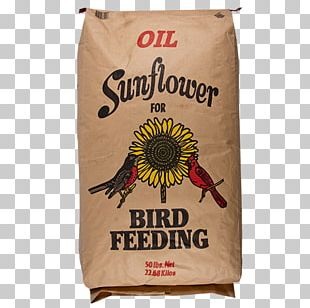 Sunflower Seed Oil Seed Company Common Sunflower PNG