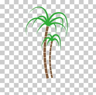Pongal Coconut Banana Musa Basjoo PNG