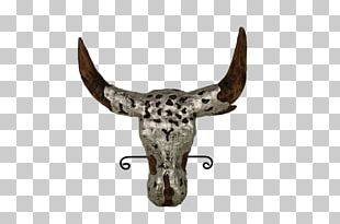 Cattle Water Buffalo Horn Terrestrial Animal Wildlife PNG
