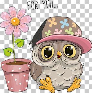 Owl Cartoon Stock Photography PNG