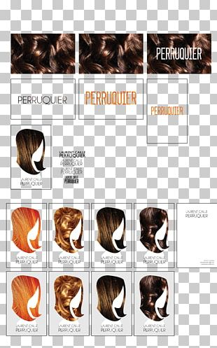 Hair Coloring Human Wig Product Design PNG
