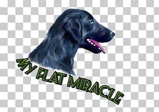 Flat-Coated Retriever Labrador Retriever Puppy Dog Breed PNG