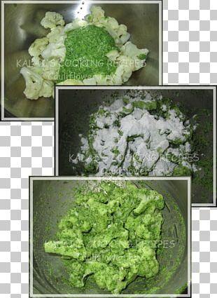 Vegetarian Cuisine Leaf Vegetable Lettuce PNG