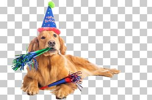 Birthday Cake Dalmatian Dog Puppy Party PNG