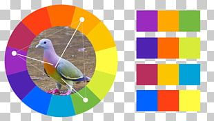 Analogous Colors Color Scheme Color Theory Graphic Design PNG