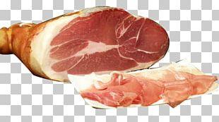 Parma Prosciutto Ham Italian Cuisine Salami PNG