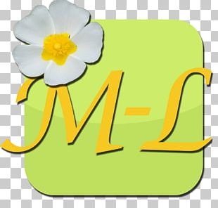 Material Flowering Plant Line PNG