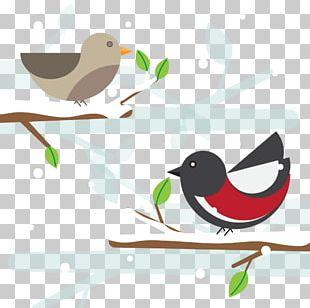 Bird Geometry Geometric Shape Circle PNG