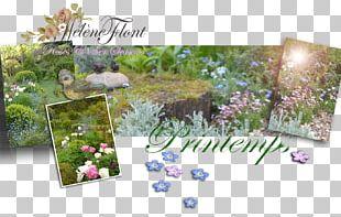 Flower Floral Design Lilac Purple PNG