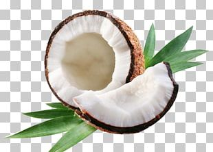 Coconut Water Coconut Milk Coconut Oil Axe7axed Na Tigela PNG