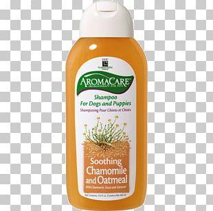 Lotion Shampoo Hygiene Chamomile Cosmetics PNG