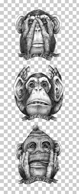The Evil Monkey Drawing Chimpanzee Illustration PNG