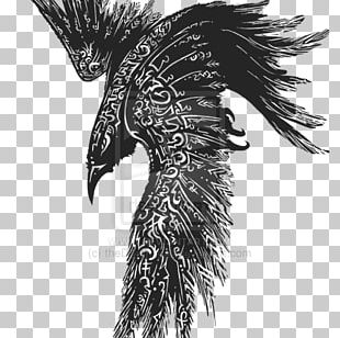 Odin Common Raven Tattoo Huginn And Muninn Celts PNG