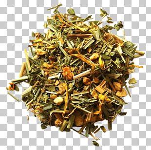 Nilgiri Tea Hōjicha Golden Monkey Tea Tea Bag PNG