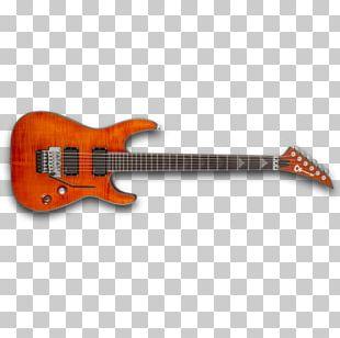 Bass Guitar Acoustic-electric Guitar Acoustic Guitar Tiple PNG