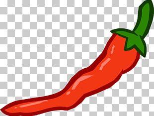 Cayenne Pepper Bell Pepper Serrano Pepper Chili Con Carne Chili Pepper PNG